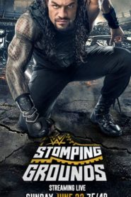 عرض WWE Stomping Grounds 2019 مترجم