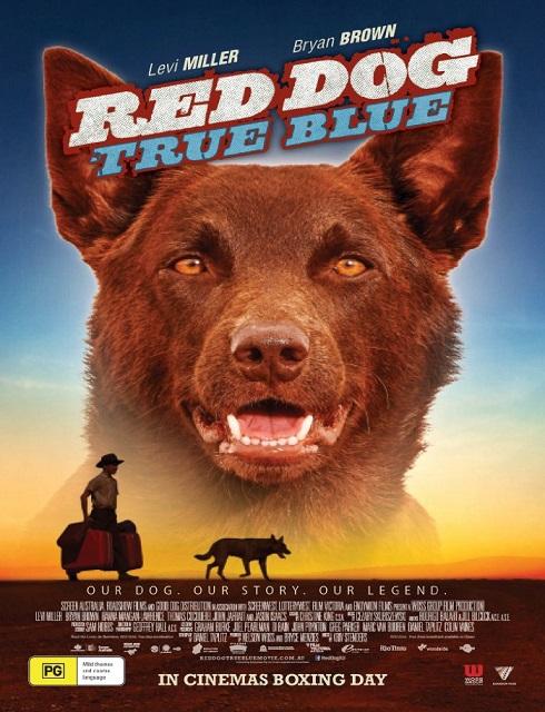 فيلم Red Dog True Blue 2016 مترجم كامل HD اون لاين