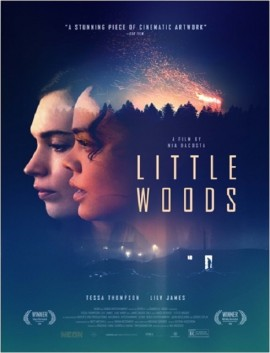 فيلم Little Woods 2018 مترجم