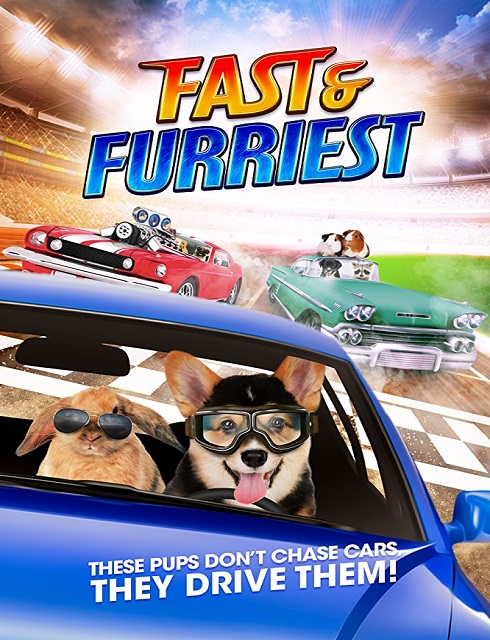 فيلم Fast and Furriest 2017 مترجم اون لاين