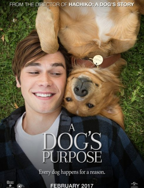 فيلم A Dogs Purpose 2017 مترجم