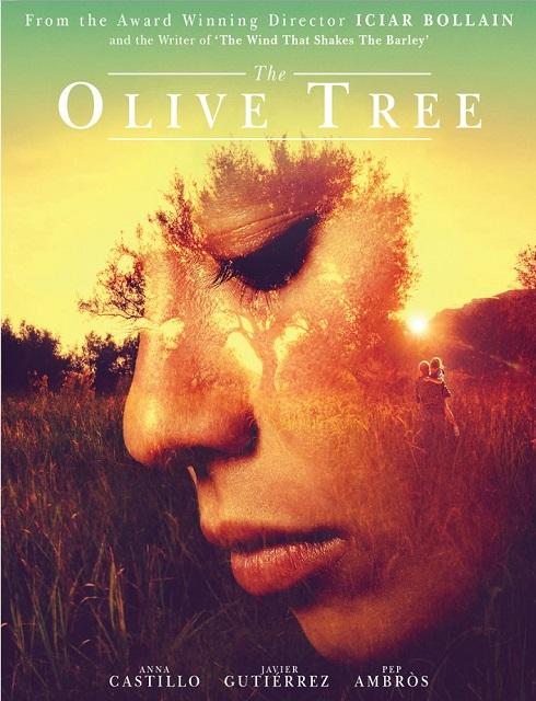 فيلم The Olive Tree 2016 مترجم اون لاين