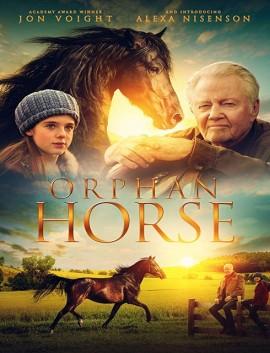 فيلم Orphan Horse 2018 مدبلج اون لاين