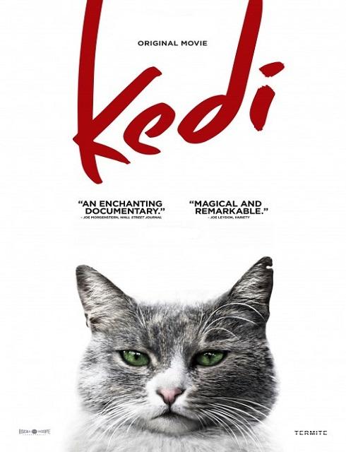 مشاهدة فيلم Kedi 2016 HD مترجم